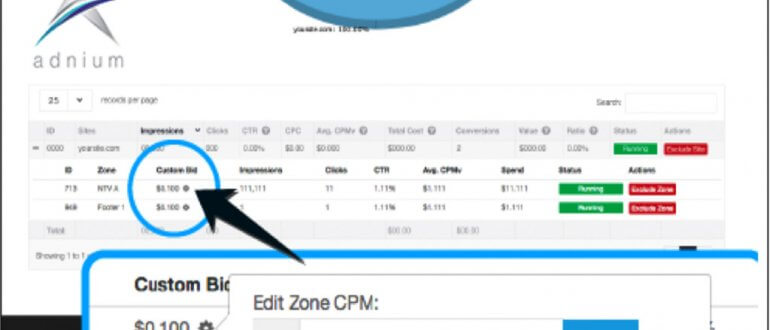 Adnium Targets Specific Traffic with Bidding by Placement